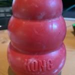 Zubehör für Hunde - Der Kong