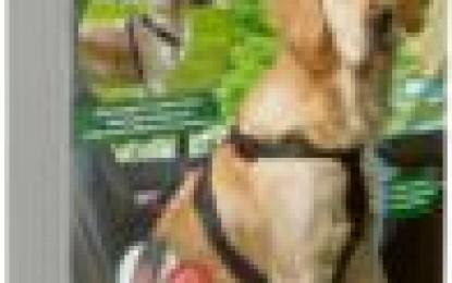 Hundegeschirr Karlie 57022 Autosicherheitsgeschirr