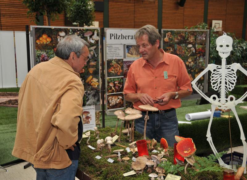 Pilzberatung Umwelttage Riegelsberg 2010