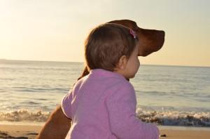 Hundebuecher fuer Kinder