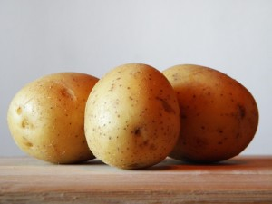Duerfen Katzen Kartoffeln fressen