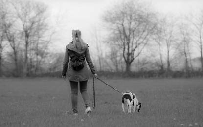 Hundeleine selber machen – 3 Anleitungen