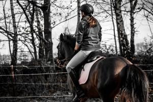 Pferdefreundlich aufsteigen