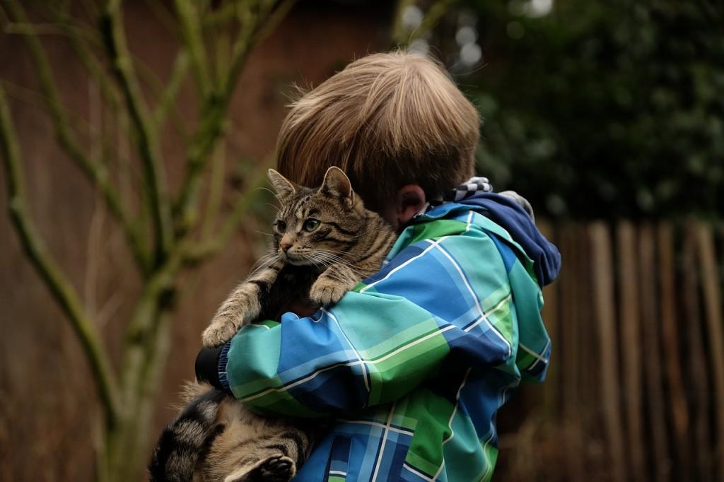 Haustiere fuer Kinder