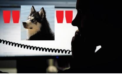 """Vorsicht vor Haustier-""""Umfragen"""""""