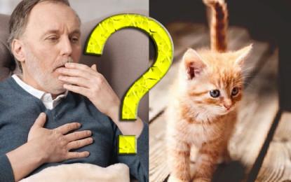 Kann man trotz COPD Haustiere halten?
