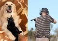 Haustiere – Die Opfer vieler Jäger