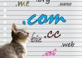 Katzen würden Cat-Domains registrieren…