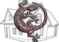 Der Gecko und wir