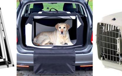 Tiere im Auto – Transportbox ist beste Wahl