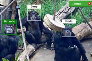 Affenerkennung Zoo Leipzig