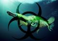 Gibt es giftige Säugetiere?