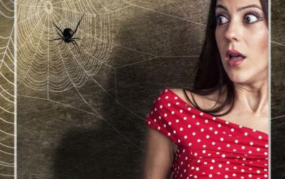 Arachnophobie – Angst vor Spinnen