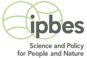 Logo-ipbes Kopie