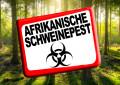 TÜV SÜD informiert zur Afrikanischen Schweinepest