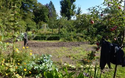 TÜV SÜD gibt Tipps für mühelose Gartenarbeit
