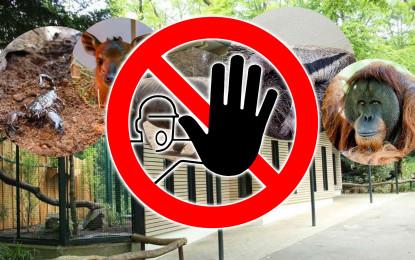 Tierisch gut: merkarion unterstützt den Zoo Dortmund