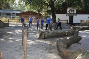 Walldorf. Aktion Wir schaffen was 2018 nIm Tierpark wurde schwer gearbeitet. 15.09.2018 - Helmut Pfeifer.