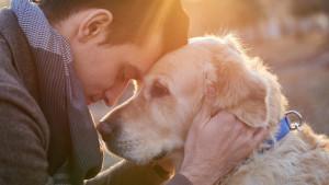 Man embracing his faithful friend the dog