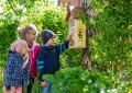 Kinder erforschen Leben der Insekten