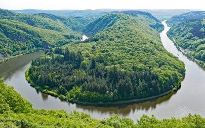 Saarland Artenreich – Neue Blühlandschaften mit der LEG Saar und Jäger-Vereinigung