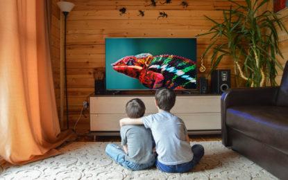 Ablenkung von Corona: TV-Zuschauer wollen mehr Tier-Sendungen statt Sport