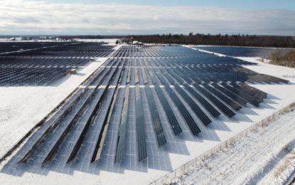GEO-Tag der Natur: ökologische Vielschichtigkeit durch Gute Solarparks