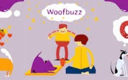 Hunde-App Woofbuzz: Die All-in-one-Plattform für ein glückliches Hundeleben