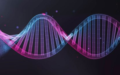 16 Wirbeltier-Referenzgenome veröffentlicht: Leibniz-IZW und BeGenDiv beteiligt an einer neuen Ära in der Genomsequenzierung