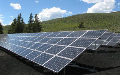 Solarparkbetreiber öffnen erstmals am 12. und 13. Juni 2021, gemeinsam mit dem Bundesverband Neue Energiewirtschaft und dem GEO Magazin ihre Tore