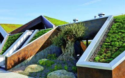 Checkliste Dachbegrünung