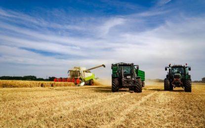 Basis der Ernährungsmittelindustrie – die Landwirtschaft